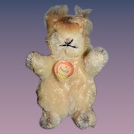 "Old Steiff Miniature Mohair ""POSSY"" Squirrel Stuffed Animal"