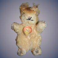 "Old Steiff Miniature Mohair ""POSSY"" Squirrel Stuffed Animal"