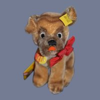 Vintage Mopsy Steiff Dog Made in Austria  All Tags Adorable