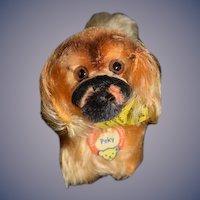 Wonderful Vintage PEKY Pekingese Steiff Dog Miniature For Doll W/ Tags & Button