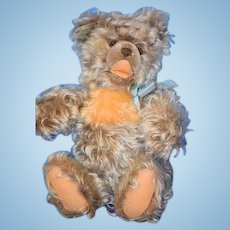 Wonderful Vintage Teddy Bear Jointed Two Tone Open Mouth Zotty?