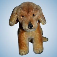 Vintage Steiff Bazi Dog Mohair Jointed Button Tag