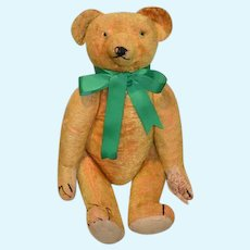 Old Teddy Bear Jointed Large Hump Back Green Glass Eyes Wonderful Doll Friend