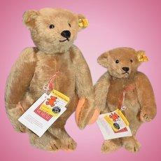 Steiff Teddy Bear Set 2 Margret Strong Teddy Bears 0155/32 In Original Box