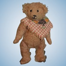 Manufactured Artist Strict Ginny ~ Stunning Plush Bear By Charlie Bears ~ So Sweet!!