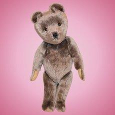 Vintage Unusual Teddy Bear Jointed Mohair Glass Eyes