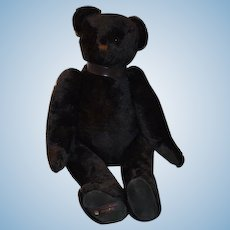 """Large Vintage Black Jointed Teddy Bear Canterbury English 32"""" Tall"""