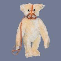 Gorgeous Steiff Muzzle Teddy Bear Jointed Mohair Wonderful Doll Friend