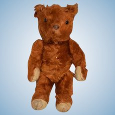 Old Teddy Bear Jointed Button Eyes Mohair Reddish Brown Doll Friend