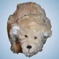 "Wonderful Teddy Bear Jointed OOAK CM BEARS Carol & Henry Martin ""Ollie"" W/ Collar"