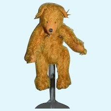 Artist Teddy Bear Jointed The Bear Basket Signed Miniature