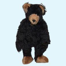 Vintage Artist Teddy Bear Sue & Randall Foskey Nostalgic Bears Signed Dated Numbered Black Bear