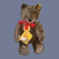 Steiff Teddy Bear Original Teddy Bear Button Tag 0202/26 Jointed Sweet