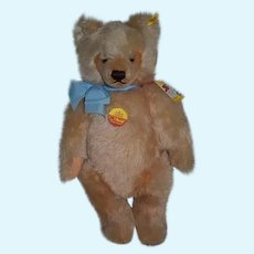 Wonderful Steiff Teddy Bear Jointed Mohair Button Tags Chest Tag and booklet 0201/14