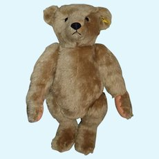 Vintage Steiff Teddy Bear Mohair Jointed Button Tag 0155/51 Sweetest Face Big Bear