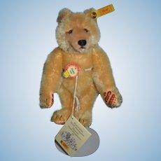 Sweet Teddy Bear Steiff Dicky Button Tag 029783 Chest Tag Booklet Miniature