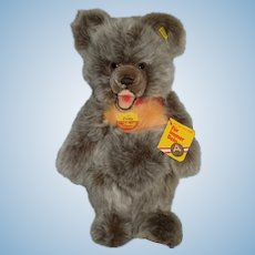 Steiff Zotty Teddy Bear W/ Tags and Button Tag Adorable 0302/30