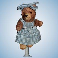Vintage Teddy Bear Miniature Jointed Glass Eyes Dressed