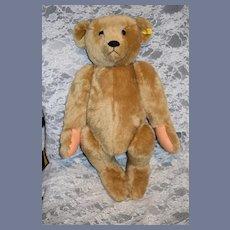 WONDERFUL Vintage Large Steiff Teddy Bear Hand Signed W/ Button Tag 0155/60