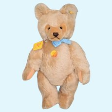 Sweet Steiff Teddy Bear Button Tag Chest Tag Growler Jointed  Mohair