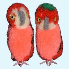 Vintage Parrot Steiff 7484/05 Twins Button Tag Two Birds Miniature