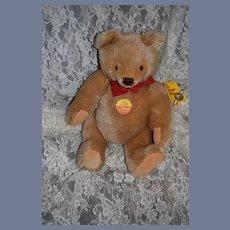 Vintage Steiff Teddy Bear 0201/36 Jointed Button Tag Mohair