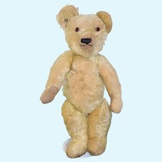 Antique Teddy Bear Blank Button Tag in Ear Jointed Mohair