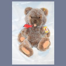 Sweet Steiff Zotty Teddy Bear Jointed W/ Chest Tag & Button Tag 0305/40