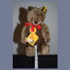 Sweet Steiff Teddy BEar W/ Button Tags Chest Tag Booklet Mohair Jointed:
