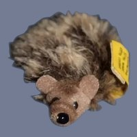 Original Steiff Stuffed Hedge Hog Miniature W/ Button Tag EAN 1670/06