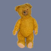 Old Teddy Bear Jointed Yellow Bear Charming