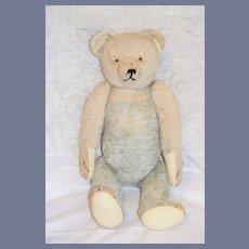 "Wonderful HUGE Teddy Bear Jointed Glass Eyes 26"" tall Unusual"