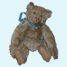 Small Gray Stuffed Teddy Bear with Blue Velvet Bow