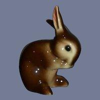 Wonderful Bunny Rabbit Hummel Porcelain Goebel