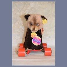 Vintage Teddy Bear Rattler Steiff Pull Toy Bear on Wheel Doll Toy