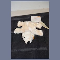 Sweet Vintage Polar Beart Steiff 110603 Button Tag Chest Tag Booklet