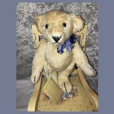 """Vintage Artist Mohair Teddy Bear Johanan Haida German Jointed """"MAX"""""""