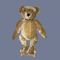 """Vintage Teddy Bear Mohair House Nisbet """"The Way We Were"""" Jointed Large English Bear Numbered"""