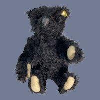 Wonderful Black Mohair Steiff Jointed Button Teddy Bear