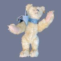 Sweet Artist Teddy Bear Jointed Mohair The Nostalgic Bear Co. Sue Foskey Wonderful Tagged