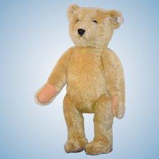 """Vintage Teddy Bear Steiff For Doll Original Button Tag Mohair 18"""""""