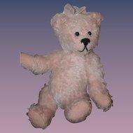 Wonderful Teddy Bear Artist New Born Teddy Signed