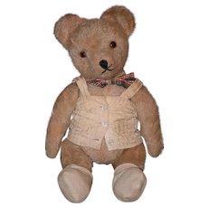 Vintage Teddy Bear Mohair Jointed W/ Corset Cutie! Doll Friend