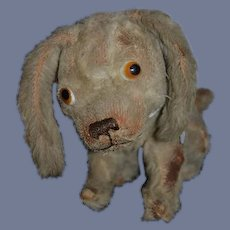 Old Dog Mohair Jointed Head Glass Eyes