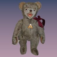 Wonderful Teddy Bear Eduard Cramer  Limited Edition W/ Tags German Jointed Adorable