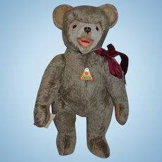 Wonderful Teddy Bear Eduard Cramer  Limited Edition W/ Tags German Jointed Adorable