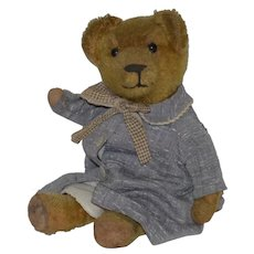 Old Teddy Bear Mohair Button Eyes Jointed Dressed