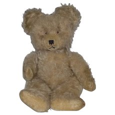 Old Teddy Bear Jointed Mohair Unusual Look Chiltern?? English Bear