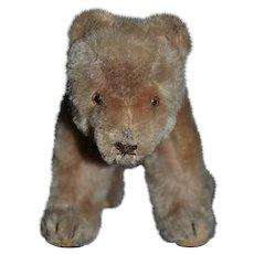 Vintage Teddy Bear on Fours Mohair and Collar Adorable Doll Friend