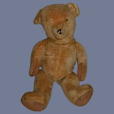 Old Teddy Bear LARGE Bear Jointed Adorable Glass Eyes Provenance